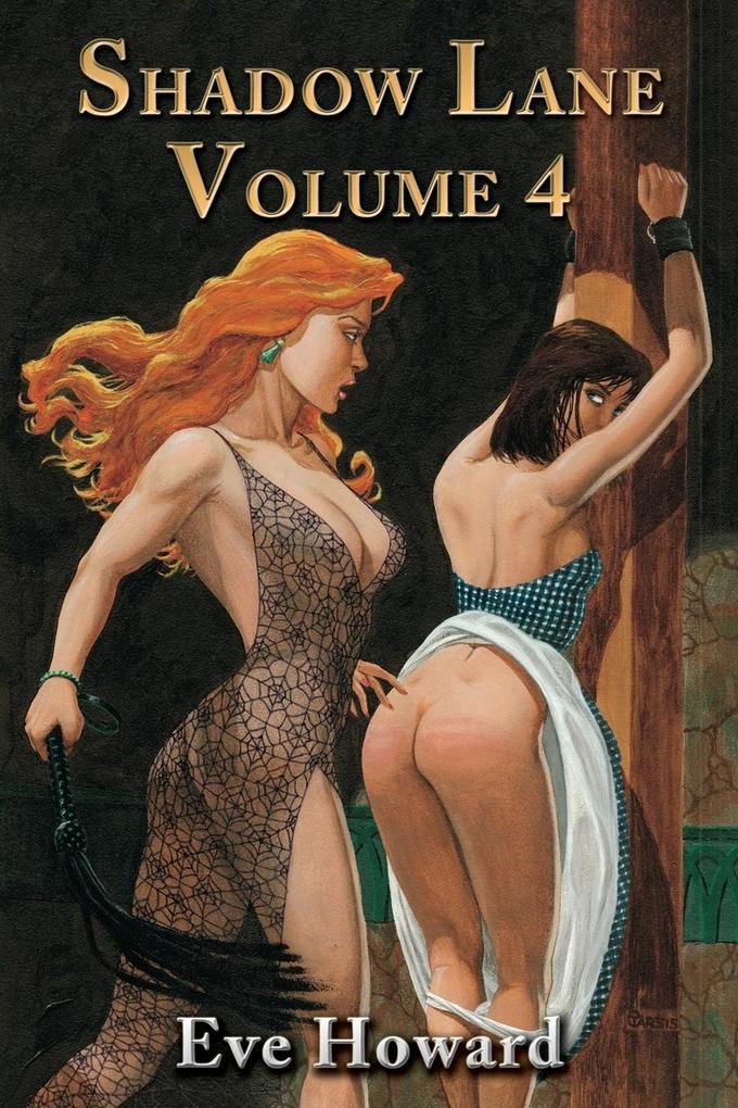 Shadow Lane Volume 4 als Taschenbuch
