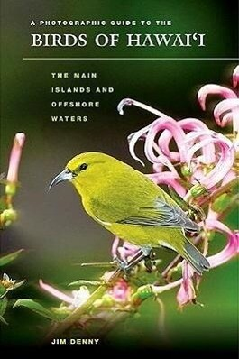 A Photographic Guide to the Birds of Hawai'i: The Main Islands and Offshore Waters als Taschenbuch